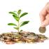 Inversiones: concepto y características