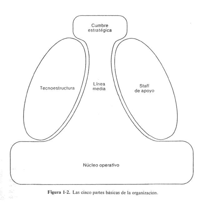 Las 5 partes de una organización