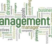 ¿Qué es el Management?